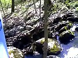 The Famous Cock Rock Caught On Rare Video
