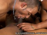 Two Bisexuals Fucking Hot Girl